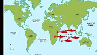 The Five Oceans Song For Kids YouTube - Number of oceans