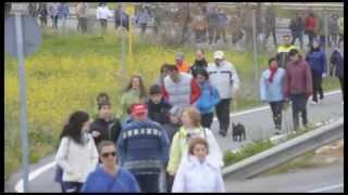 La afición del Caja Segovia F.S. marcha en favor del futuro del equipo