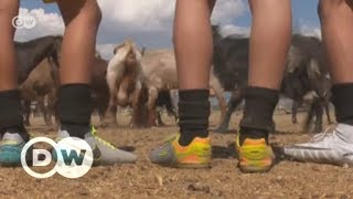 Turkey: Soccer team trades players for goats | DW English - DEUTSCHEWELLEENGLISH