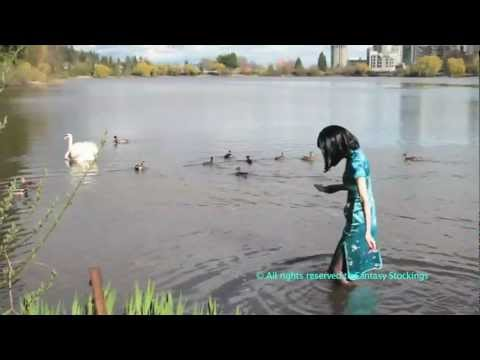 Wetlook In The Lost Lagoon - Congratulations to Wetlook-Online.com !  10 years of excellence.
