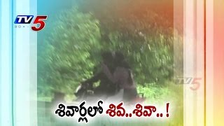 TV5 Special Focus | Growing Crime in Hyderabad Outskirts : TV5 News - TV5NEWSCHANNEL