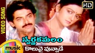 Swarna Kamalam Telugu Movie Songs | Koluvai Vunnade Video Song | Venkatesh | Bhanupriya | Ilayaraja - MANGOMUSIC