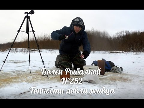 ловля щуки на бамбулу видео