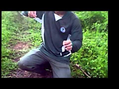 Video Mancing Ikan Baung- Martapura Mancing Coy Ikan Terbesar Disungai