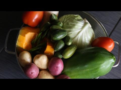 সব্জির বাগান - পর্ব ১ || Vegetables Garden - Part 1 || 2017