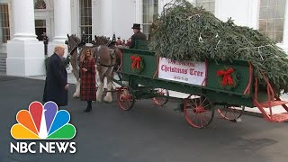 President Donald Trumps Welcome White House Christmas Tree | NBC News - NBCNEWS