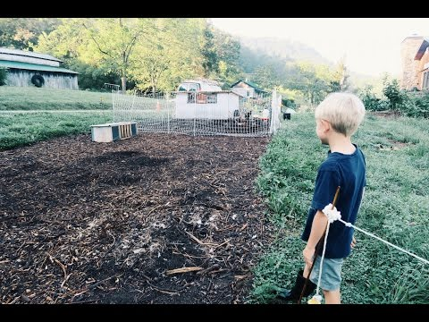 Fall Gardening Begins