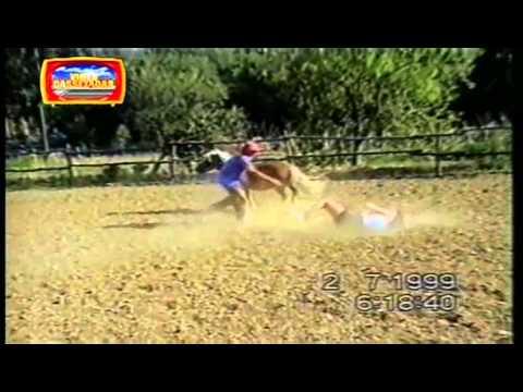 Vídeo Cassetadas do Faustão 27/02/2011