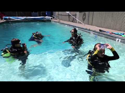 Pinnacles Dive Center Summer Scuba Camp