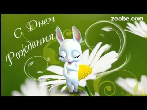 Zoobe скачать поздравление с днем рождения