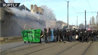 Teargas, smoke & fire: Anti-Le Pen protesters clash with police in Nantes, France - RUSSIATODAY