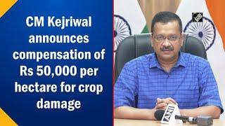 video : Kejriwal द्वारा Crop Loss के लिए 50 हजार रुपये Per Hectare मुआवजे की घोषणा