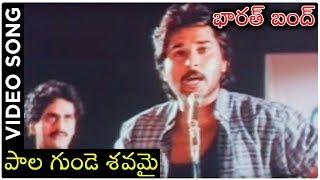 Barath Bandh Telugu Movie Songs | Palagunde Savamai | Vinod Kumar | Raghu | Archana - RAJSHRITELUGU