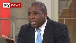 Labour MP David Lammy lays out case for second referendum - SKYNEWS