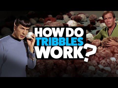 How do Tribbles Work? (Star Trek Theory)