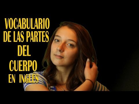 ¡EL MEJOR VOCABULARIO DE LAS PARTES DEL CUERPO EN INGLÉS!