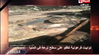 """أحمد المسلمانى : توابيت فرعونية تطفو على سطح ترعة """" دير مواس """" بمحافظة المنيا"""