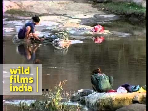 Maldhari women doing manual laundry on river side