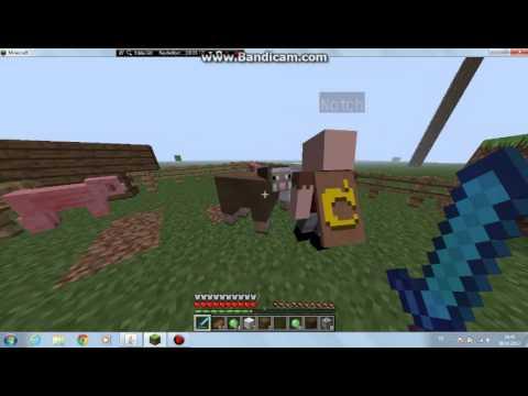 Minecraft Hayvanlarla takılmaca :D