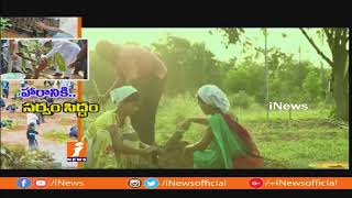 All Set For 4th Phase of Harish Haram | Crores Of Seedlings Getting Ready at Nurseries | iNews - INEWS