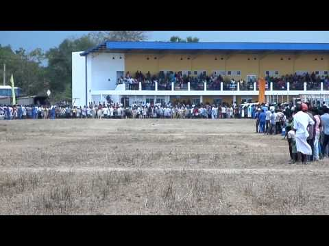 part01 cart cattle race  and vavuniya musical show in ariyalai suthesiyam 95th encounter