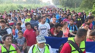 'The Big Vote': Migrant caravan, early voting, 538's House and Senate forecast | ABC News - ABCNEWS