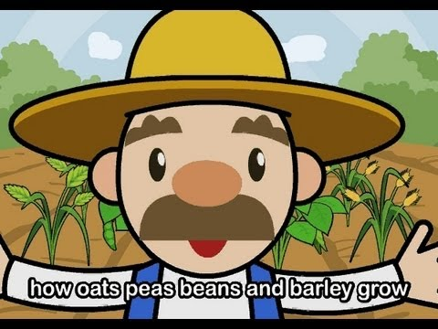 Muffin Songs – Oats Peas Beans and Barley Grow  İngilizce Tekerlemeler ve İngilizce Çocuk Şarkılar