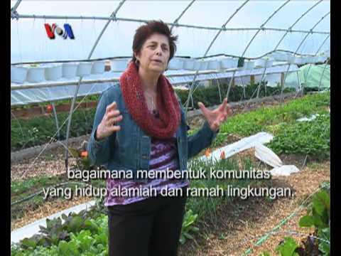 Pertanian Organik, Ecocity Farm - Liputan Feature VOA untuk Berita Satu April 2012