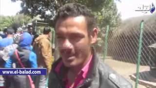 بالفيديو .. بائع ربابة في حديقة الحيوان: 'جئت من المنيا علشان أسترزق في بني سويف'