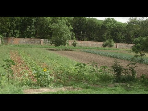 Living With The Land | Part 6 | Animal-free Farming