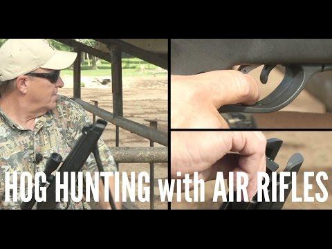 Hog Hunting with a Gamo Air Rifle