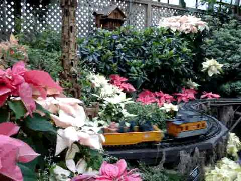 Thumbnail image for 'Winter Flower Shows & Train Gardens in Chicago'