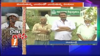Farmers Demands Crop Loan In West Godavari   Special Driver On Farmers   iNews - INEWS