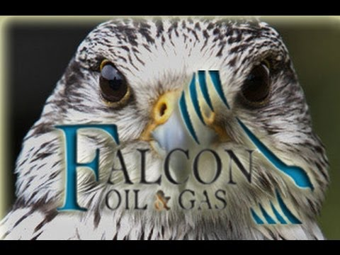 Falcon Oil & Gas buys out Australian business