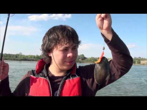 на омке рыбалка