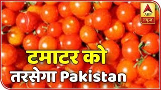 MP farmers say no to to exporting Tomato produce to Pak - ABPNEWSTV