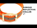 SunGlo Standard Collar, Reflective