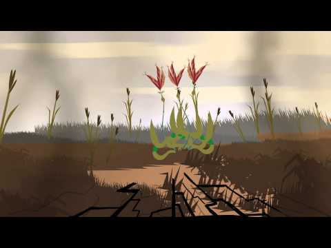 Amazing Plants of the Sandhills - Big BlueStem