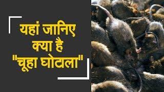 "Watch: Eknath Khadse demands probe into rodent killing | यहां जानिए क्या है ""चूहा घोटाला"" - ZEENEWS"