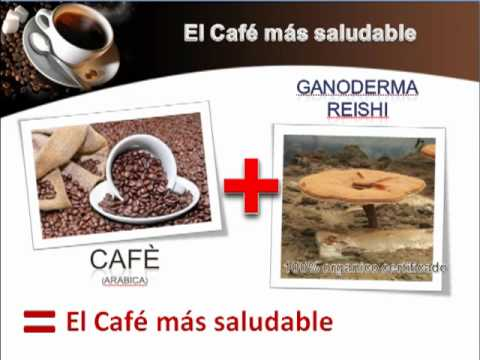 OrGano Gold Espanol.mp4