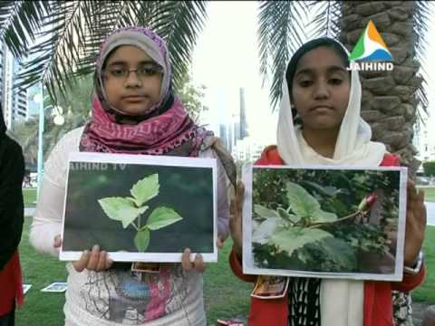 Middle East Edition News, Jaihind TV, 09.02.2014