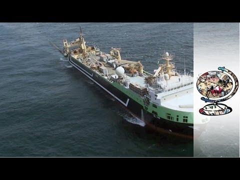 Super Trawler: Margiris 2013 documentary movie play to watch stream online
