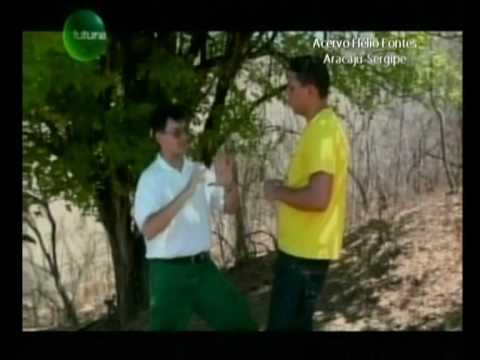 Tom da Caatinga - Ecologia Parte II