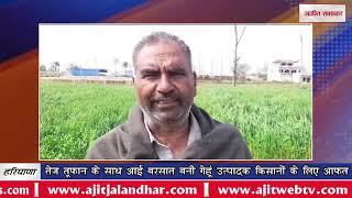 video : तेज तूफान के साथ आई बरसात बनी गेहूं उत्पादक किसानों के लिए आफत
