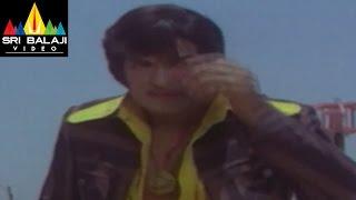 Tiger Movie NTR Fight With Tiger   Sri Balaji Video - SRIBALAJIMOVIES