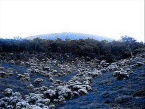 Gunung Gede-pangrango 2958 Mdpl