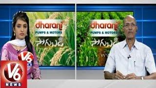 Chilli crop cultivation techniques - Rtd.Prof. Rama Subba Reddy - Sagubadi - V6NEWSTELUGU