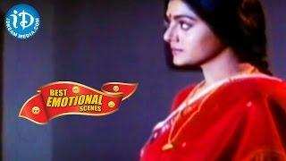 Telugu Movies || Best Emotional Scene || Bangaru Mogudu Movie || Suman, Bhanu Priya - IDREAMMOVIES