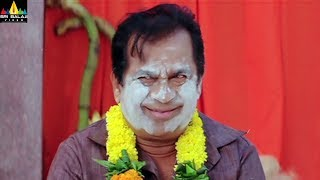 Rama Rama Krishna Krishna Movie Brahmanandam Comedy | Ram Pothineni, Bindu Madavi, Priya Anand - SRIBALAJIMOVIES