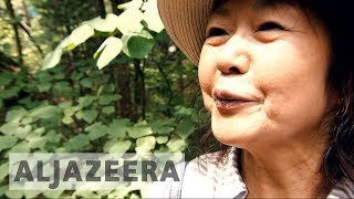 Forest bathing: The latest health craze in Japan - ALJAZEERAENGLISH